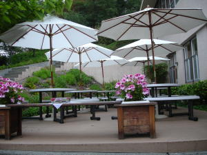 A C North Patio Umbrellas